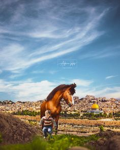 تحميل اجمل خلفية هاتف بجودة عالية خلفيات القدس قبة الصخرة In 2021 Jerusalem Natural Landmarks Nature