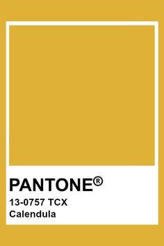 PANTONE 13-0757 TCX Calendula #pantone #color Gold Pantone Color, Yellow Pantone, Pantone Colour Palettes, Pantone Tcx, Pantone Swatches, Color Swatches, Color Harmony, Color Psychology, Colour Schemes