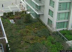 The Marriott Hotel in Victoria, BC, Canada has a green roof above the entrance to the underground parking. This is all part of the hotel cha...
