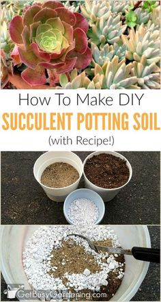 succulent garden care Step-by-step instructions (with recipe and photos) for DIY succulent potting soil. Making your own succulent potting soil is cheaper than buying the commercial stuff. Succulent Potting Mix, Succulent Outdoor, Vertical Succulent Gardens, Succulent Planter Diy, Succulent Landscaping, Propagating Succulents, Succulent Gardening, Succulent Care, Succulent Arrangements