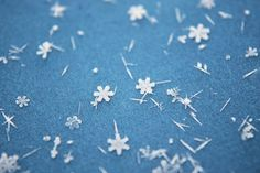 It's an amazing experience seeing snowflakes like this with the naked eye. I'll never forget it. <3