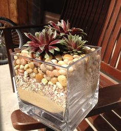 Very nice guide into how to create a succulent plant arrangement