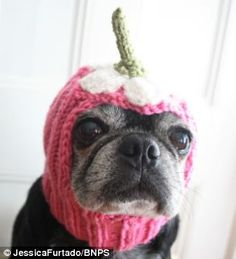While others are even more odd, such as this daisy hat