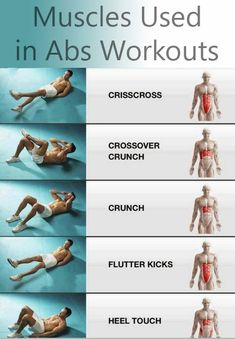 Muscles used in ab workouts