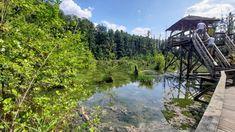 Bakancslistás látnivaló a Tatai Fényes Tanösvény   Sokszínű vidék Places To Go, Mountains, Nature, Travel, Naturaleza, Viajes, Destinations, Traveling, Trips