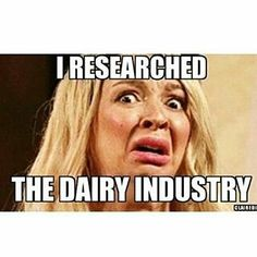 @Regrann from @lovlyvegan_ma_of_2 -  This was really my face the whole time watching the ugly truth about the dairy industry. It is fuken horrible! How I wish the truth a long ass time ago! Do some research and find out. These cows get artificially inseminated, killed before their life span is up, the male calves get taken away from their mother to be turned into veal, they don't even get that bonding with their mother. Dairy cows are used as milk machines (remember there's always pus and…