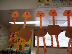 Oviparous Animals- The ostrich- how cute!