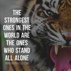I will always stand alone, you will always hide behind others, think about it if you are capable, how truly pathetic you are