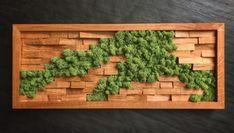Moss Wall Art, Moss Art, Island Moos, Vertical Garden Plants, Wall Design, House Design, Garden Terrarium, Indoor Plants, Home And Garden