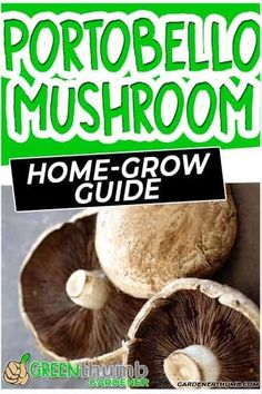 Want to learn how to grow portobello mushrooms at home.  Check out our easy mushroom growing guide to grow fresh ones with very little effort. Grow Your Own Mushrooms, Growing Mushrooms At Home, Mushroom Grow Kit, Fall Vegetables, Types Of Vegetables, Growing Vegetables, Stuffed Portabello Mushrooms, Stuffed Mushroom Caps, Mushroom Spores