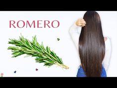 Aceite de oliva con romero: ambos ingredientes permiten hacer crecer tu cabello de manera sencilla y eficaz. Ayuda activar la circulación de la sangre del cuero cabelludo y, por lo tanto, activa la producción de un cabello sano y fuerte. Beauty Secrets, Beauty Hacks, Overnight Hair Growth, Stop Hair Loss, Tips Belleza, Hair Oil, New Look, Blonde Hair, Hair Makeup