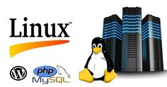 Web Hosting Blog Pakistan: Linux web Hosting – Wise Decision to Get Initiate for Web appearance