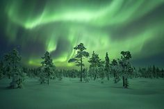 Northern Lights - Sweden