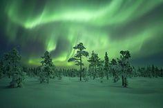 Northern Lights - Sweden