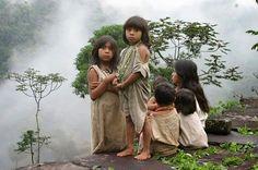 Crónicas de la Tierra sin Mal : Belleza