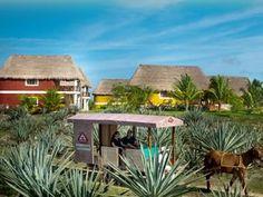 yucatan mexico haciendas | hacienda sotuta de peon, haciendas en yucatán