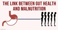 One of the easiest ways to improve your gut health is to eat fresh organic vegetables and fermented foods, which provide fiber and probiotics. http://articles.mercola.com/sites/articles/archive/2016/03/07/probiotics-fiber-malnutrition.aspx