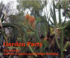 Garden Party Book, A group show curated by Hadley Holliday and Carolyn Castaño with FOCA Blurb Book, Printed Matter, Self Publishing, Hadley, Indigo, Group, Inspired, Garden, Party