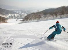 For the best ski experience in South Korea, you have to pick the best ski resorts. These highly-rated ski slopes promise everyone an exhilarating ride.