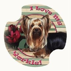 Yorkshire Terrier Carsters - Coasters for Your Car