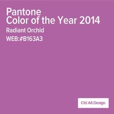 Radiant Orchid folks! This color isn't for the timid and faint of heart. You only live once, so go for it!