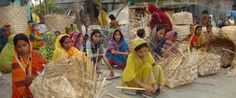 Female beneficiaries, living in the slums of Central Bangladesh are learning to weave baskets