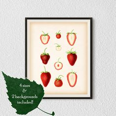Food print Kitchen prints Kitchen wall art by RestoredBotanicalArt