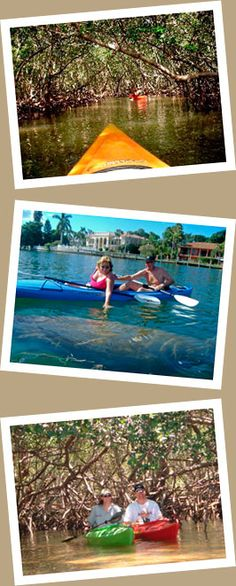LIDO (SARASOTA)   MANGROVE TUNNELS TOUR  If you are looking for outdoor things to do in the Sarasota area, then this family-friendly, kayak eco tour is for you. Come travel through the exotic mangrove tunnels, and explore Sarasota Bay, which is frequented by manatees and dolphins.