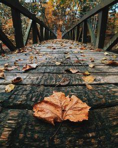 Autumn inspiration: 18 tips for 18 spectacular photos - Nature / background -. Autumn Photography, Creative Photography, Amazing Photography, Landscape Photography, Photography Jobs, Newborn Photography, Product Photography, Photography Backgrounds, Photography Courses