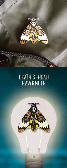 Death's Head Hawkmoth Enamel Pin Badge. Click the link to purchase. £6 + p&p #moth #enamelpin #insects #wildlife #pinbadge