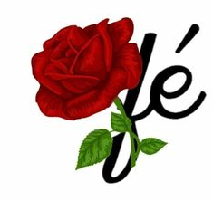Jesus Pictures, Flower Clipart, Transparent Stickers, Love Messages, Flower Tattoos, Doodle Art, Collage Art, Disney, Beautiful Flowers