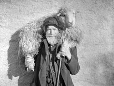 shepherd with sheep on shoulders - Google Search