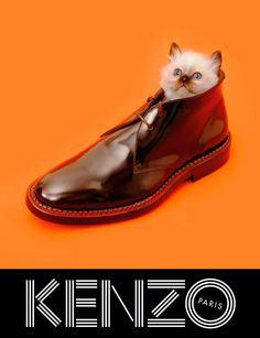 kenzo_fw13_campaign_5 — Designspiration