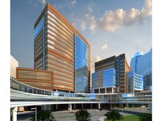 Texas Children's Hospital new tower proposed Artistic illustration Bates Street view January 2015 (2)