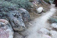 More for Big Bear Hiking and Mountain Biking