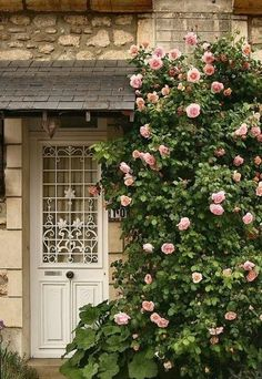 New Pergola Ideas Entrance Climbing Roses Ideas Rose Cottage, Cottage Style, Cottage Door, Beautiful Gardens, Beautiful Flowers, Paris Home, Colorful Roses, Climbing Roses, Doorway