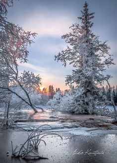 Winter Love, Winter Snow, Winter Pictures, Nature Pictures, Winter Photography, Landscape Photography, Beautiful Winter Scenes, Winter Magic, Winter Scenery