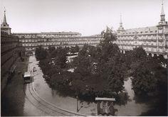 Qué rara la Plaza Mayor con tantos árboles. Imágenes del viejo Madrid