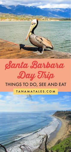 Santa Barbara Day Trip: Things to Do, See and Eat - Tanama Tales Us Travel Destinations, Best Places To Travel, Cool Places To Visit, Visit Santa Barbara, Santa Barbara Beach, Santa Barbara Mission, Usa Travel Guide, Travel Usa, Travel Tips