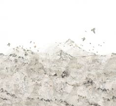 Sheer maps in layers upon layers meet illustrations and the soft grayness of the graphite pencil. Place the wallpaper on every wall of the room to create an entire mountain range, with the birds' flight over the mountains as the finishing touch.