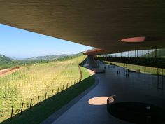 Antinori Winery, Bargino FI, Italy ( photo by Elsie Hsu )
