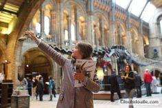 Natural history museum gratuit  sensational butterflies (19£ famille)