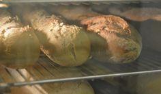 DSC_9169 Bread, Food, Catering Business, Brot, Essen, Baking, Meals, Breads, Buns