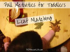 Fall Activities for Toddlers - Leaf Matching