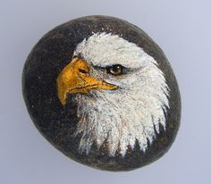 Hey, I found this really awesome Etsy listing at https://www.etsy.com/listing/234001601/hand-painted-rock-paperweight-bald-eagle