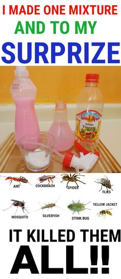 This is a powerful mixture that can literally kill insects on spot. It kills weeds in days with no effort at all. All natural ingredients and safe for pets – Gesundes Design Thinking, Natural Bug Killer, Diy Cleaning Products, Cleaning Hacks, Homemade Ant Killer, Ant Killer Recipe, Spider Killer, Ant Killer Spray, Wasp Killer
