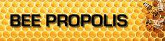 Bee Pollen | Benefits of Bee Pollen |
