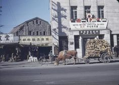 Prolific UN banner and oxcart, 1949 Seoul. Photo lightened from original at link.