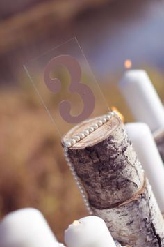 Birch tree table numbers