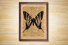 Butterfly poster Cabin decor Animal print by CrowDictionaryPrints